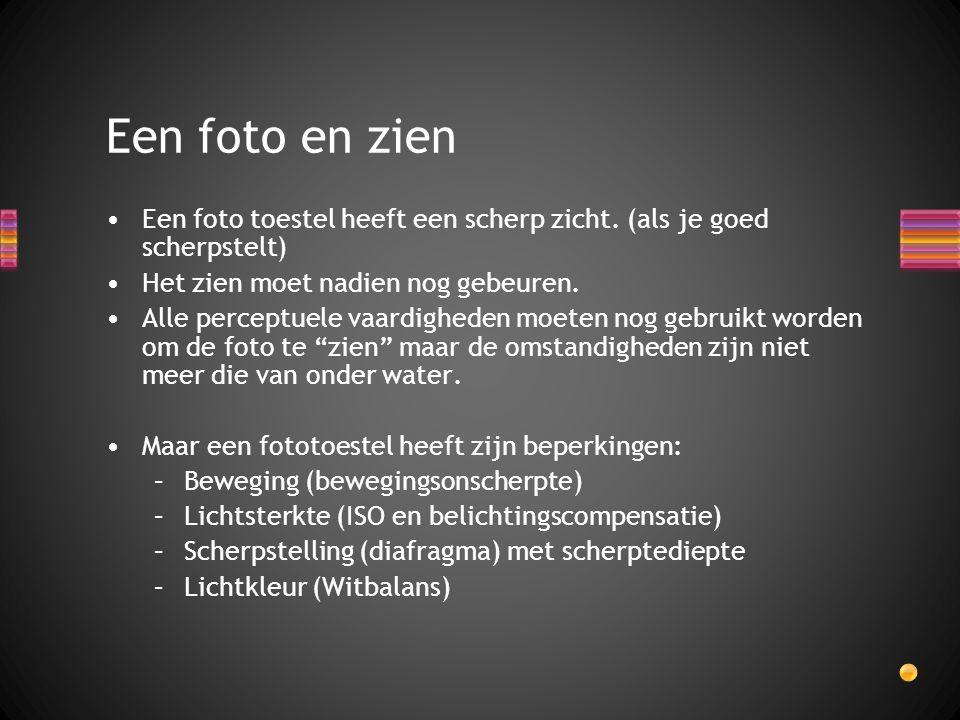 Een foto en zien Een foto toestel heeft een scherp zicht. (als je goed scherpstelt) Het zien moet nadien nog gebeuren.