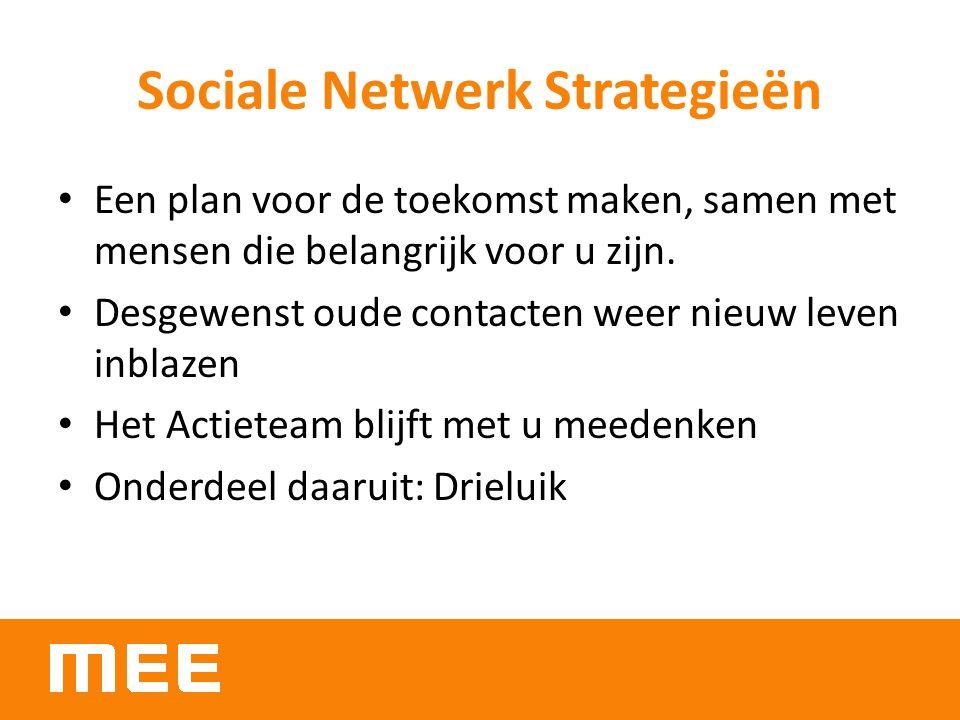 Sociale Netwerk Strategieën