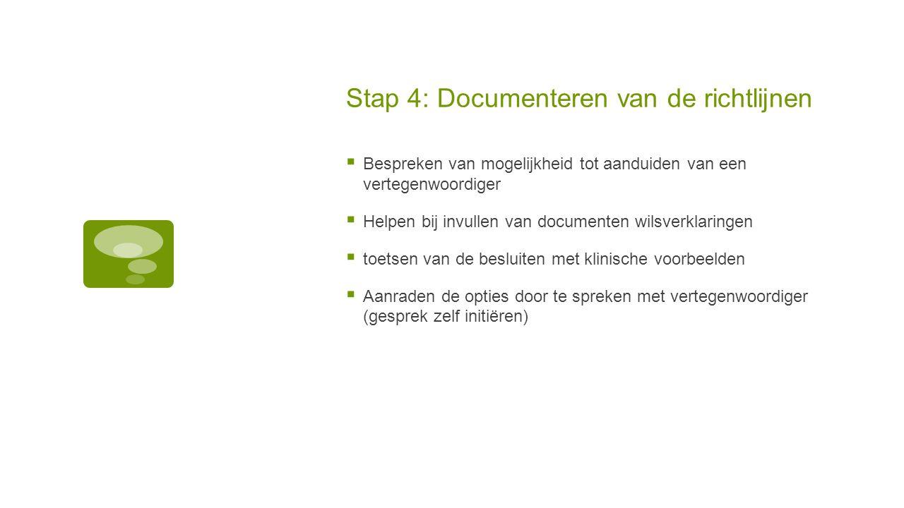 Stap 4: Documenteren van de richtlijnen