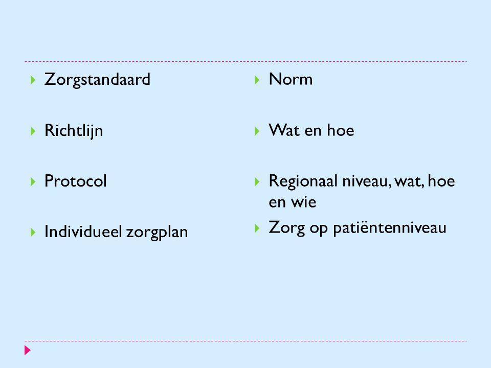 Zorgstandaard Richtlijn. Protocol. Individueel zorgplan. Norm. Wat en hoe. Regionaal niveau, wat, hoe en wie.