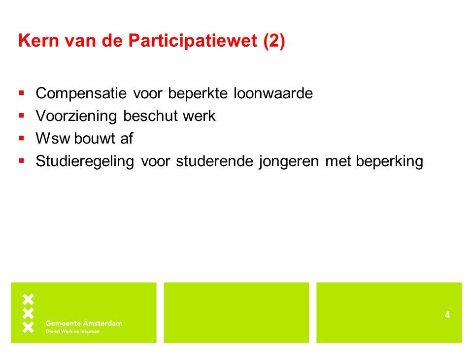 Kern van de Participatiewet (2)