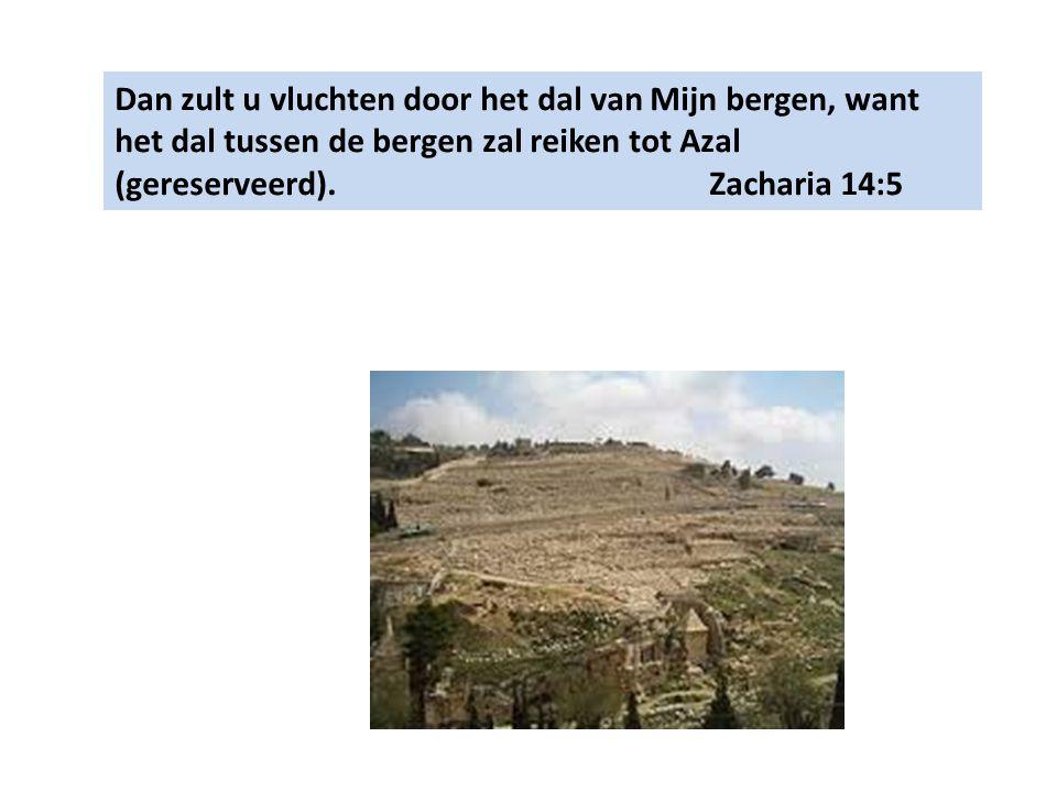 Dan zult u vluchten door het dal van Mijn bergen, want het dal tussen de bergen zal reiken tot Azal (gereserveerd).