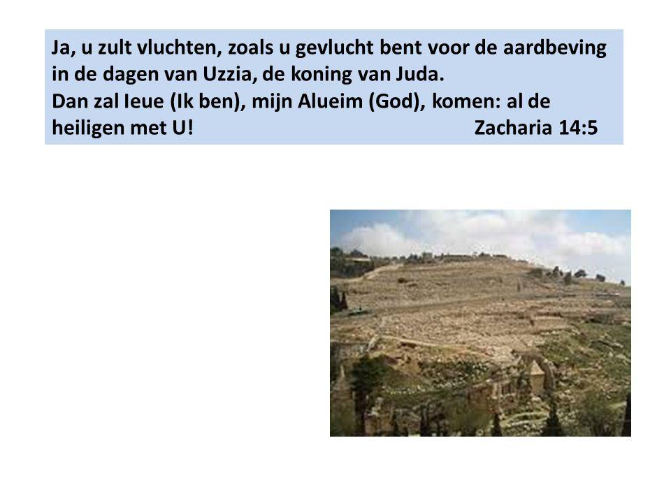Ja, u zult vluchten, zoals u gevlucht bent voor de aardbeving in de dagen van Uzzia, de koning van Juda.
