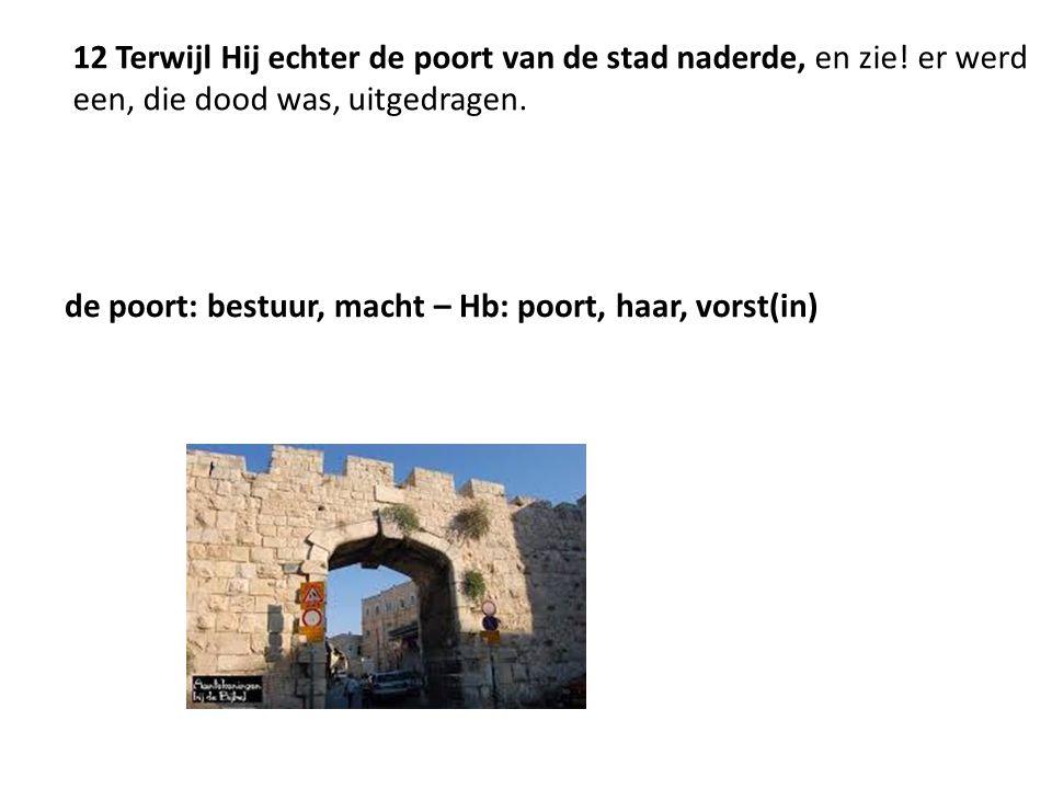 12 Terwijl Hij echter de poort van de stad naderde, en zie