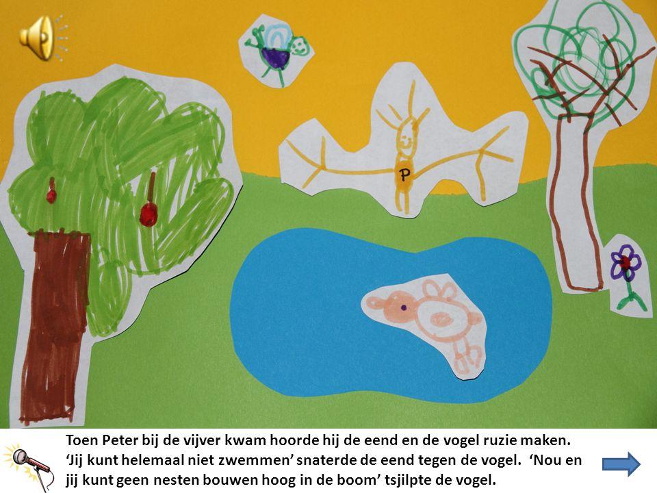 Toen Peter bij de vijver kwam hoorde hij de eend en de vogel ruzie maken.
