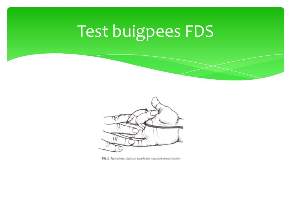 Test buigpees FDS