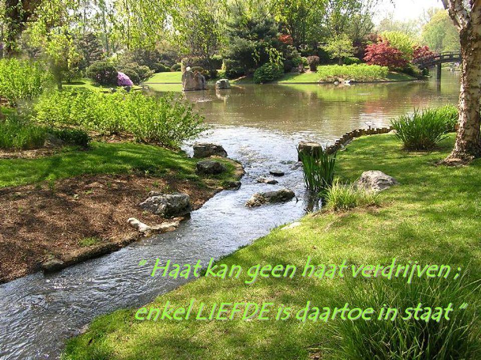 Haat kan geen haat verdrijven ;