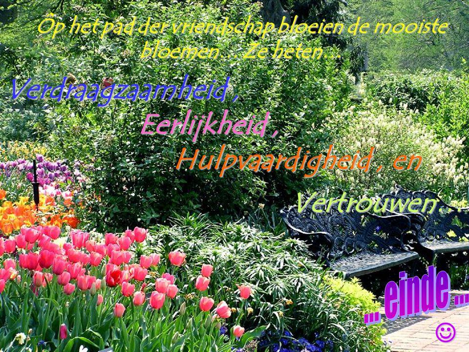 Ôp het pad der vriendschap bloeien de mooiste bloemen… Ze heten…