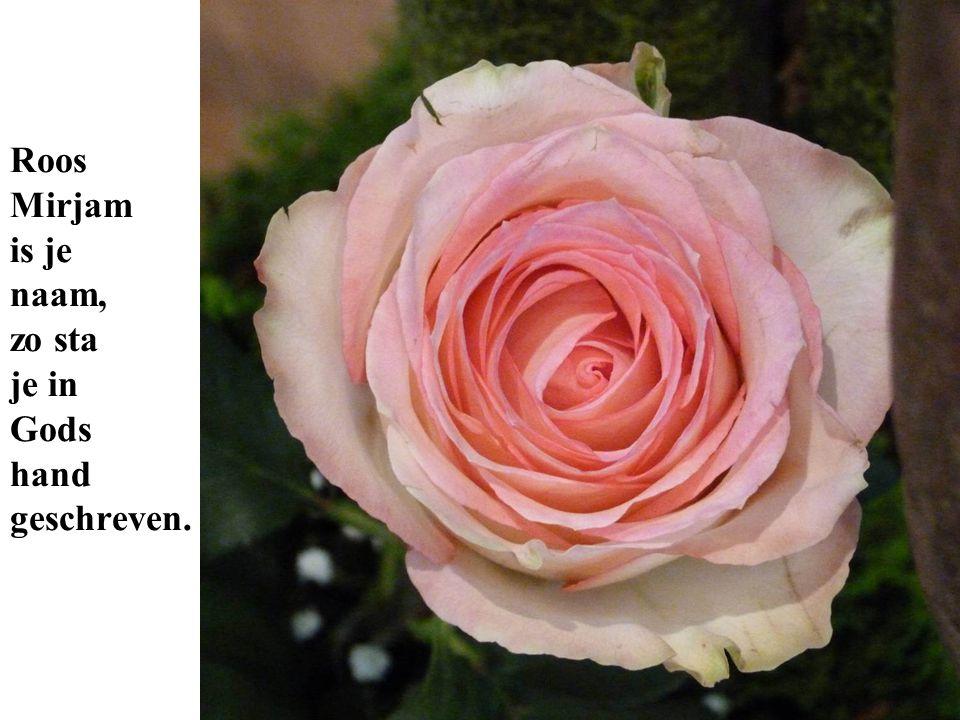 Roos Mirjam is je naam, zo sta je in Gods hand geschreven.