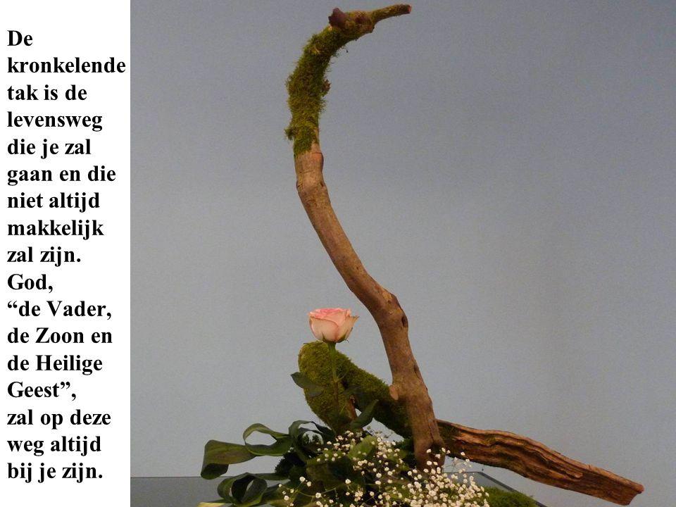 De kronkelende tak is de levensweg die je zal gaan en die niet altijd makkelijk zal zijn.