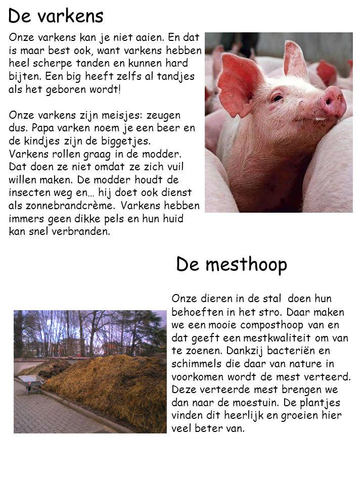 De varkens