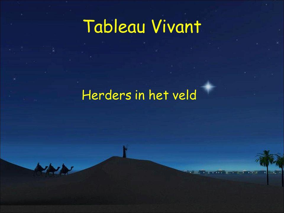 Tableau Vivant Herders in het veld