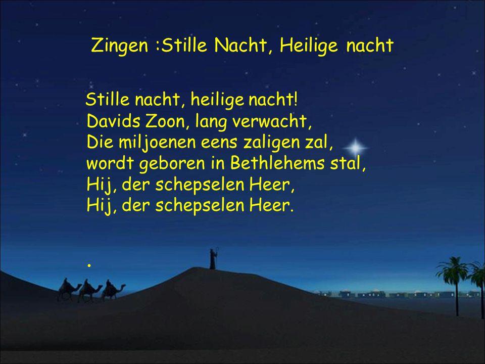 Zingen :Stille Nacht, Heilige nacht