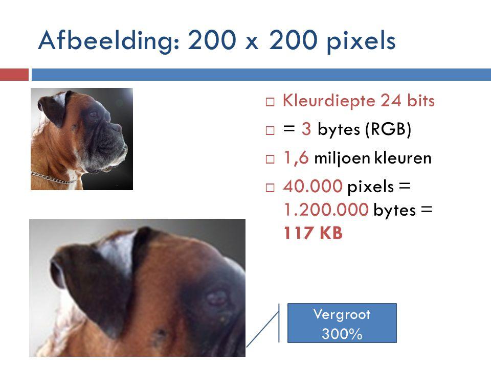 Afbeelding: 200 x 200 pixels Kleurdiepte 24 bits = 3 bytes (RGB)