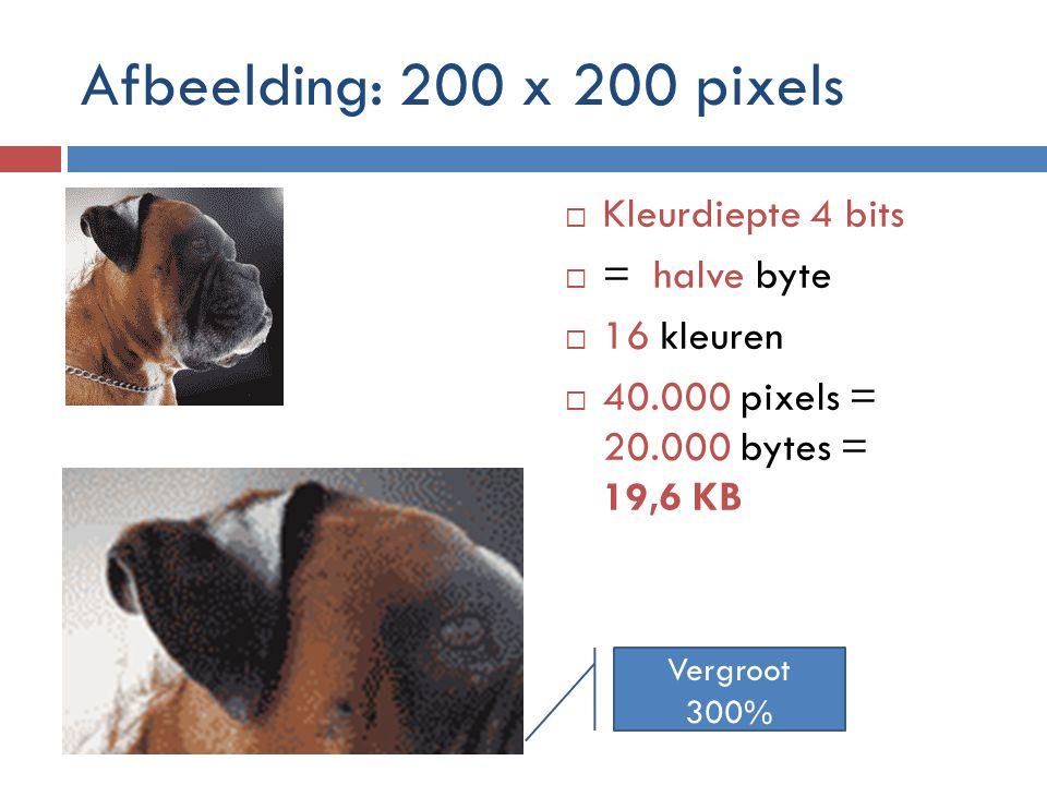Afbeelding: 200 x 200 pixels Kleurdiepte 4 bits = halve byte