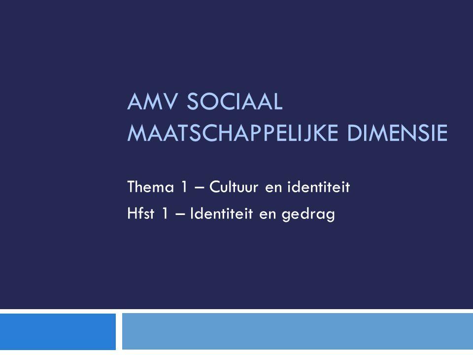 AMV Sociaal maatschappelijke dimensie