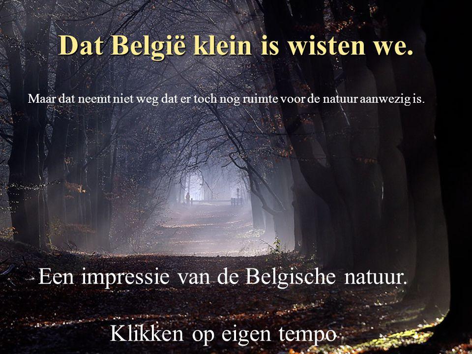 Dat België klein is wisten we.