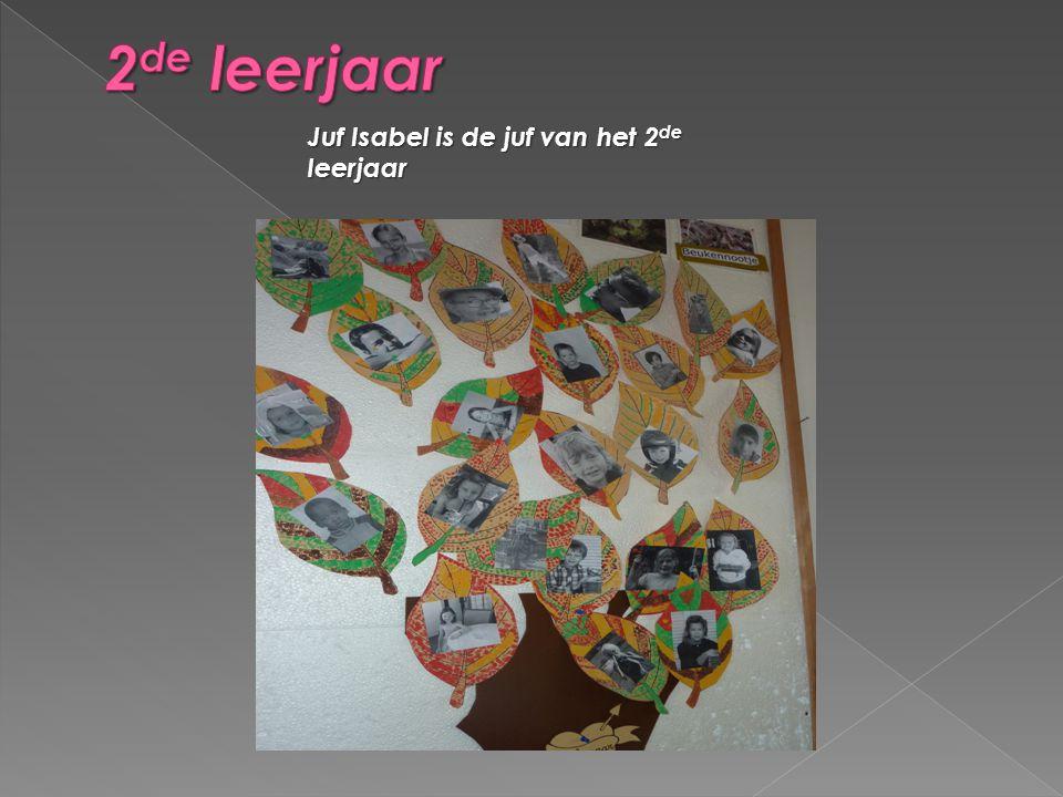 2de leerjaar Juf Isabel is de juf van het 2de leerjaar