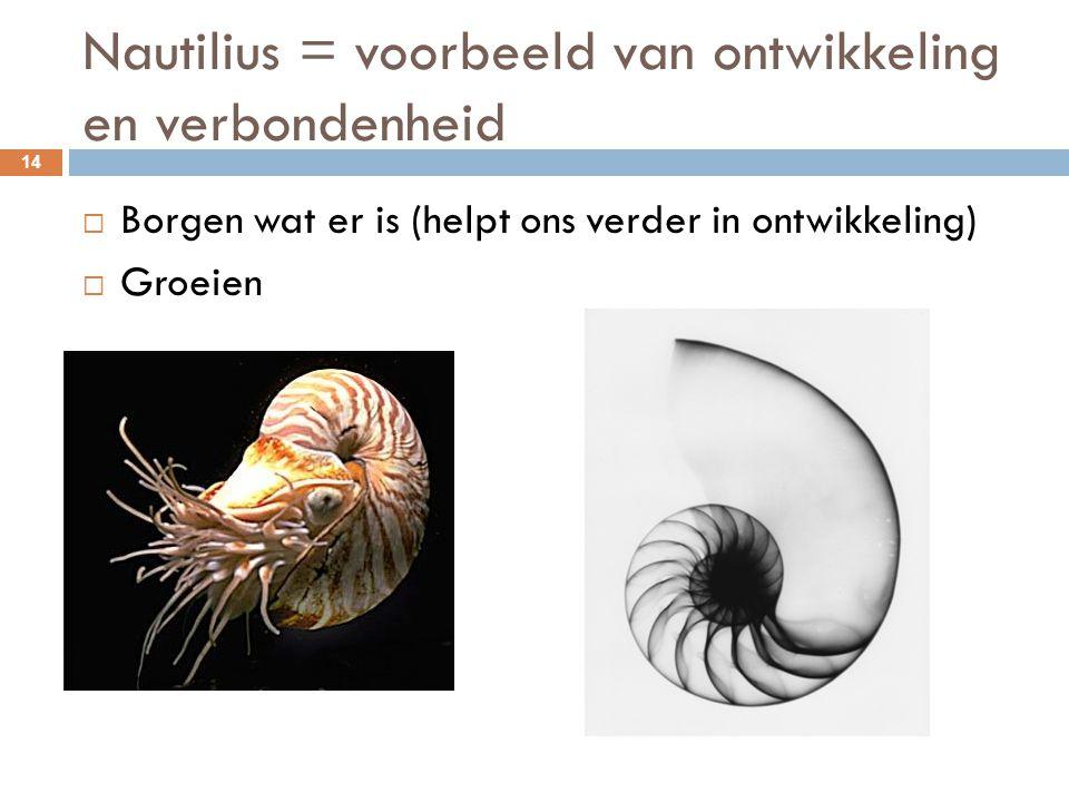 Nautilius = voorbeeld van ontwikkeling en verbondenheid