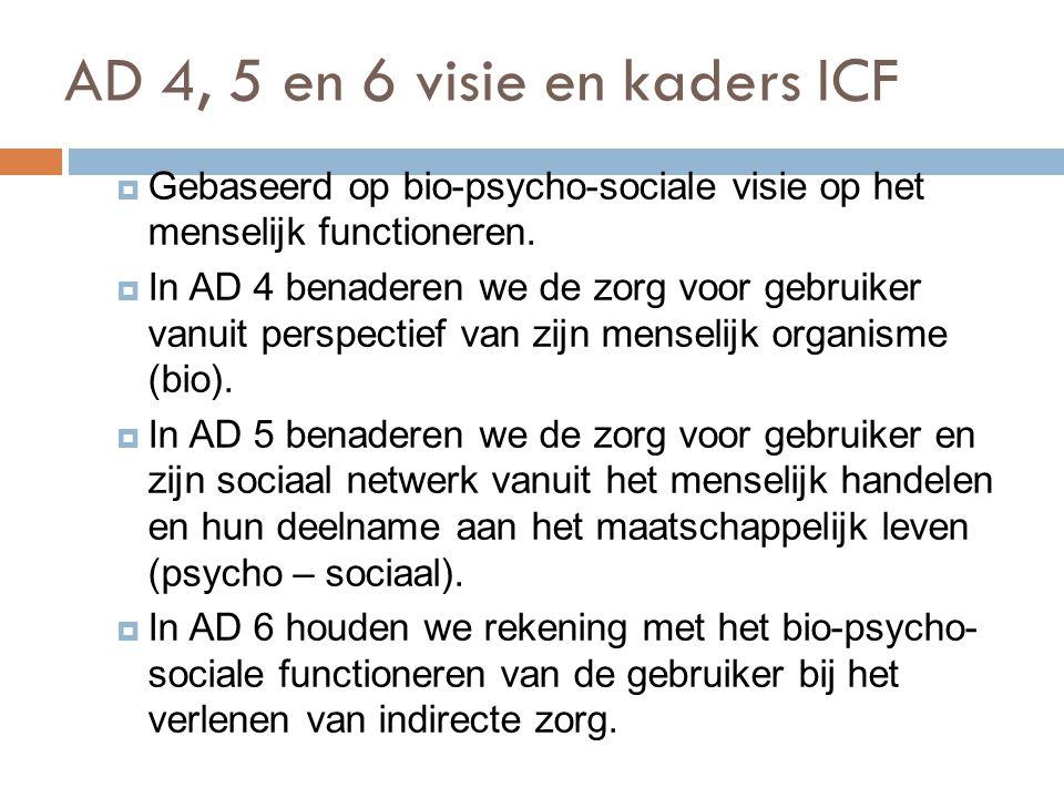AD 4, 5 en 6 visie en kaders ICF