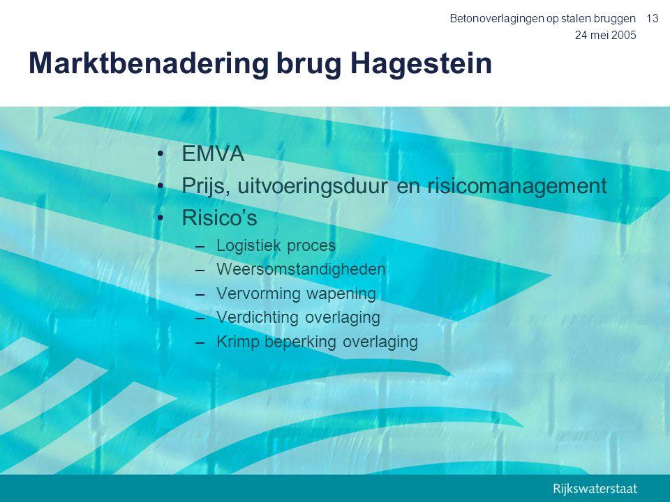 Marktbenadering brug Hagestein