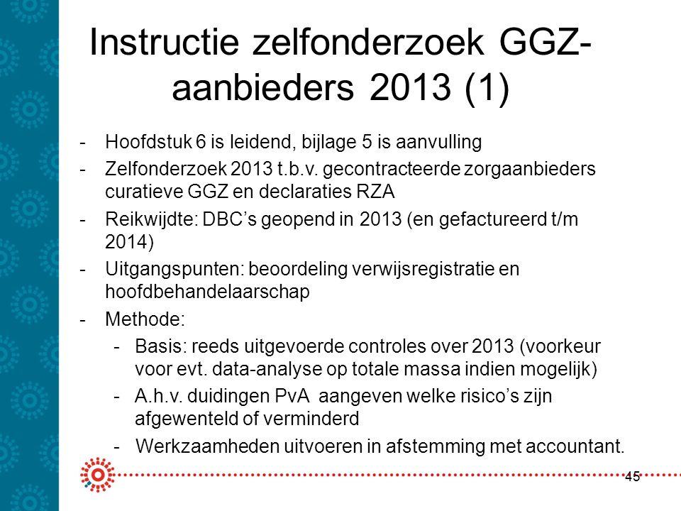 Instructie zelfonderzoek GGZ-aanbieders 2013 (1)