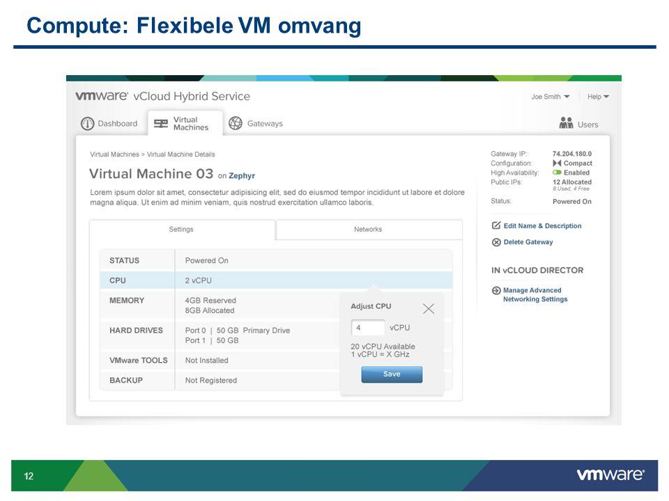 Compute: Flexibele VM omvang