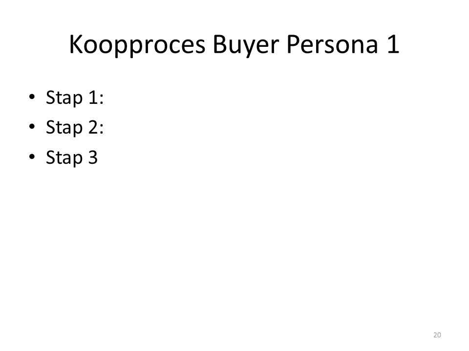 Koopproces Buyer Persona 1