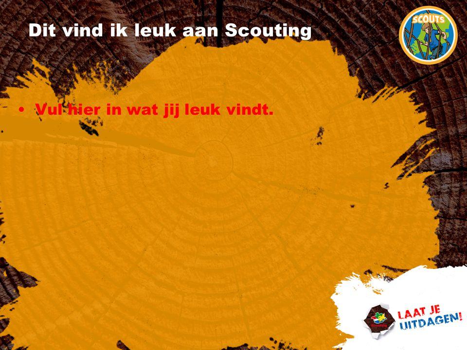 Dit vind ik leuk aan Scouting