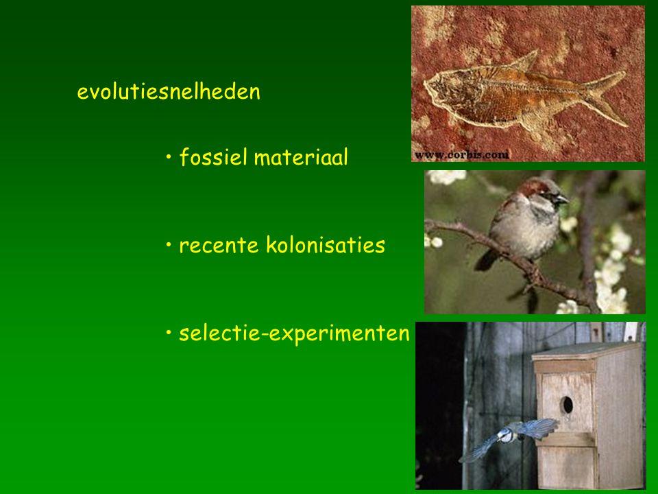 fossiel materiaal evolutiesnelheden recente kolonisaties selectie-experimenten