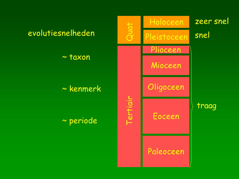 Paleoceen Eoceen. Oligoceen. Mioceen. Plioceen. Holoceen. Pleistoceen. Tertiair. Quat. traag.