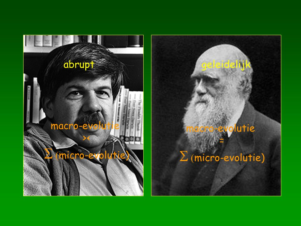 abrupt geleidelijk macro-evolutie >< S (micro-evolutie) =