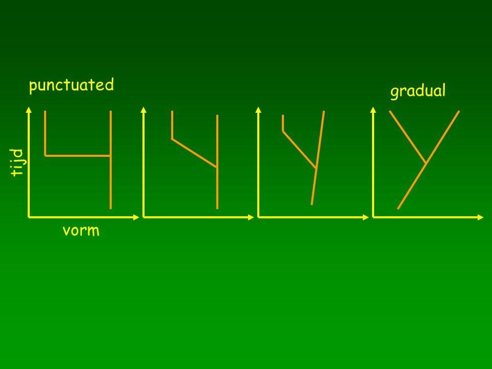 punctuated gradual tijd vorm