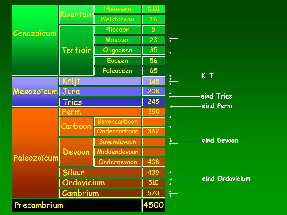 Cenozoïcum Mesozoïcum Paleozoïcum Precambrium Kwartair Tertiair Krijt