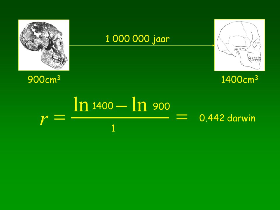 1 000 000 jaar 900cm3 1400cm3 ln - ln 1400 = 900 = r 0.442 darwin 1