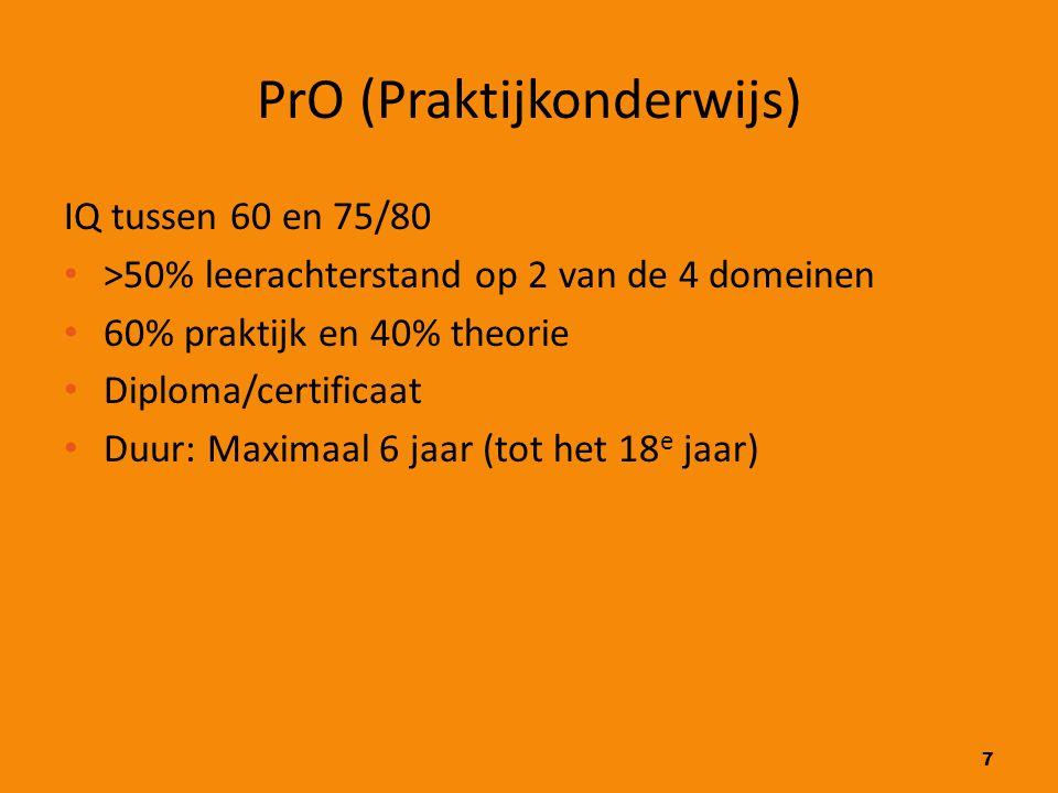 PrO (Praktijkonderwijs)