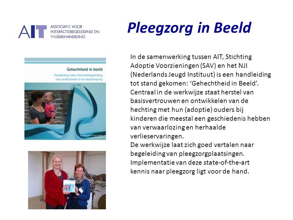 P Pleegzorg in Beeld
