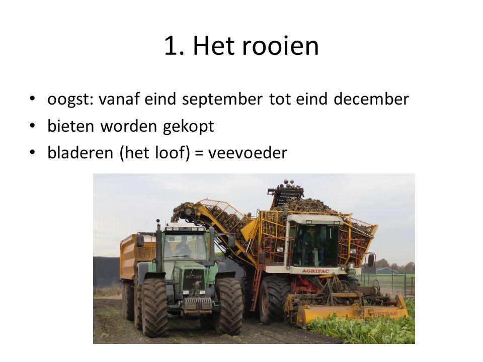1. Het rooien oogst: vanaf eind september tot eind december
