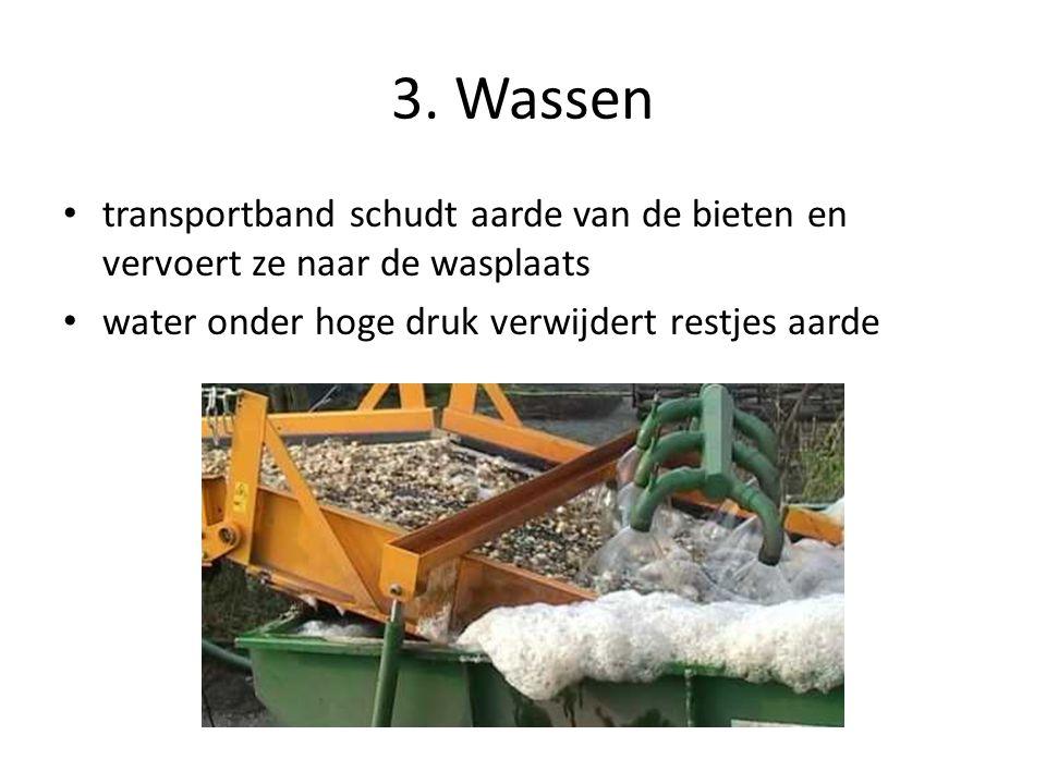 3. Wassen transportband schudt aarde van de bieten en vervoert ze naar de wasplaats.
