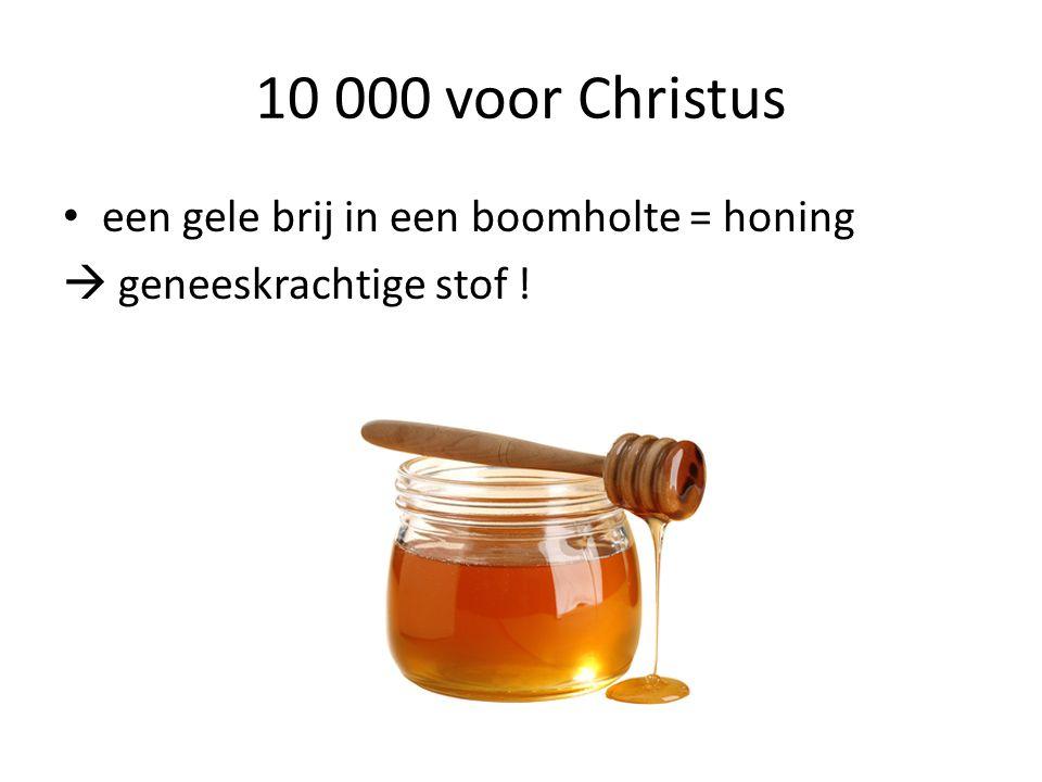 10 000 voor Christus een gele brij in een boomholte = honing