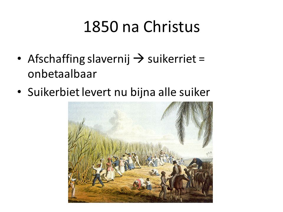 1850 na Christus Afschaffing slavernij  suikerriet = onbetaalbaar