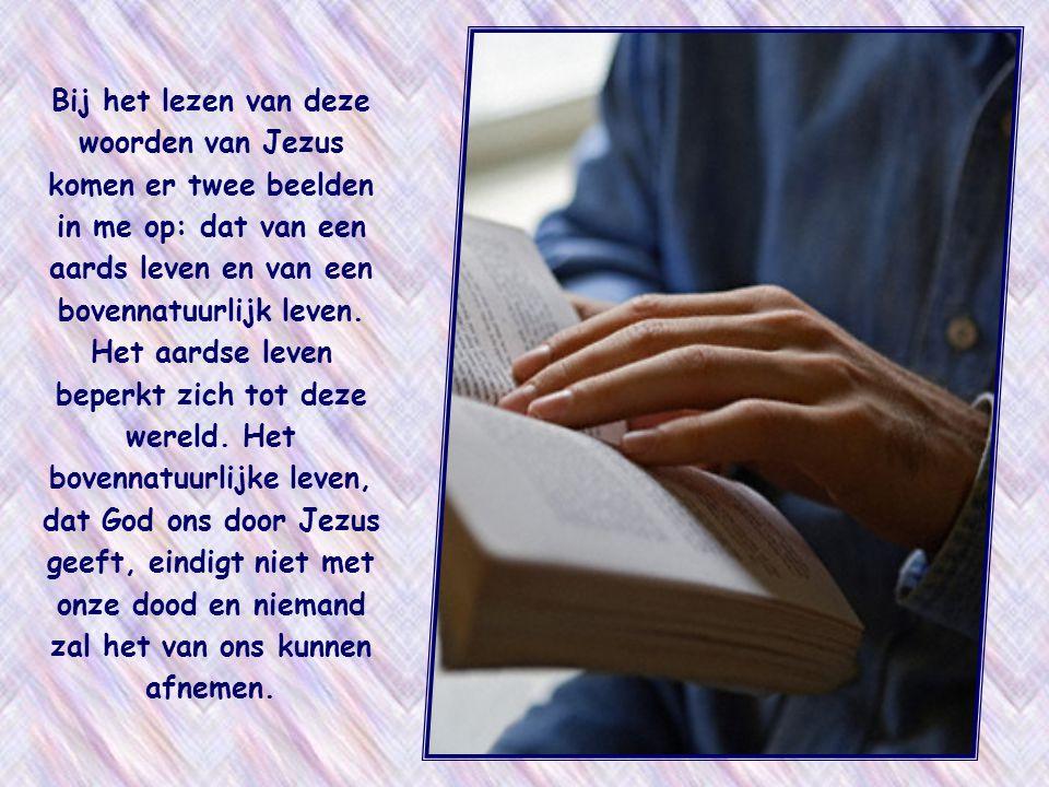 Bij het lezen van deze woorden van Jezus komen er twee beelden in me op: dat van een aards leven en van een bovennatuurlijk leven.