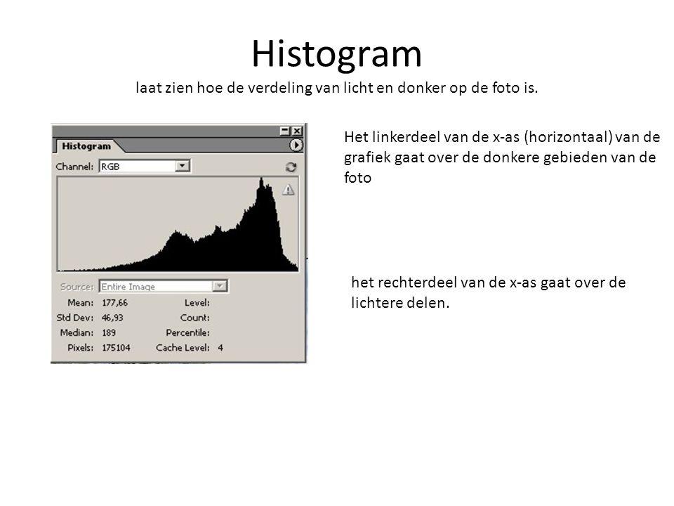 Histogram laat zien hoe de verdeling van licht en donker op de foto is.