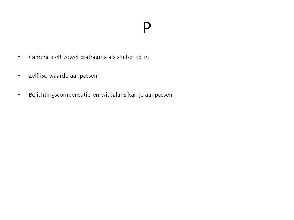 P Camera stelt zowel diafragma als sluitertijd in