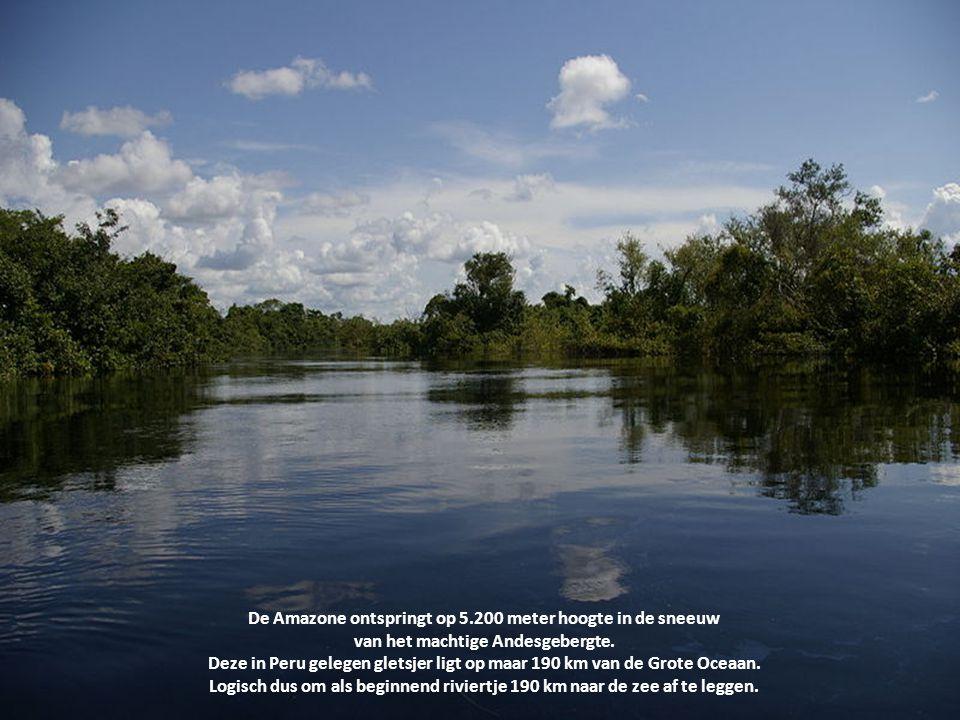 De Amazone ontspringt op 5.200 meter hoogte in de sneeuw