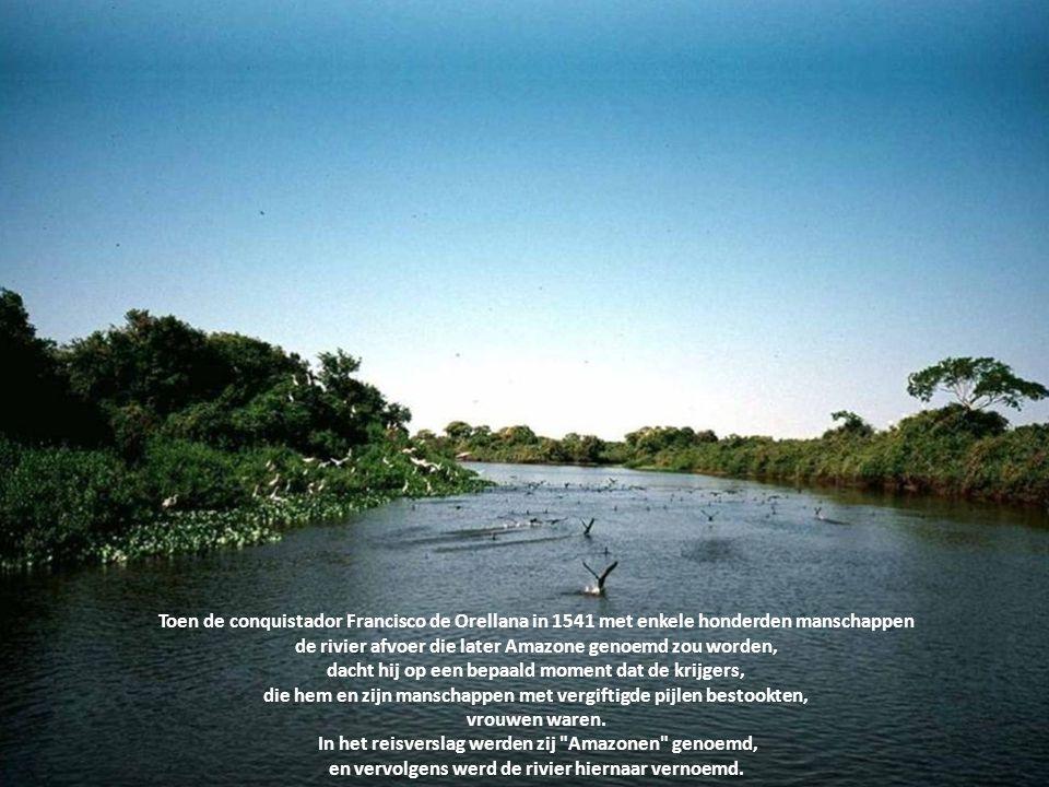 de rivier afvoer die later Amazone genoemd zou worden,