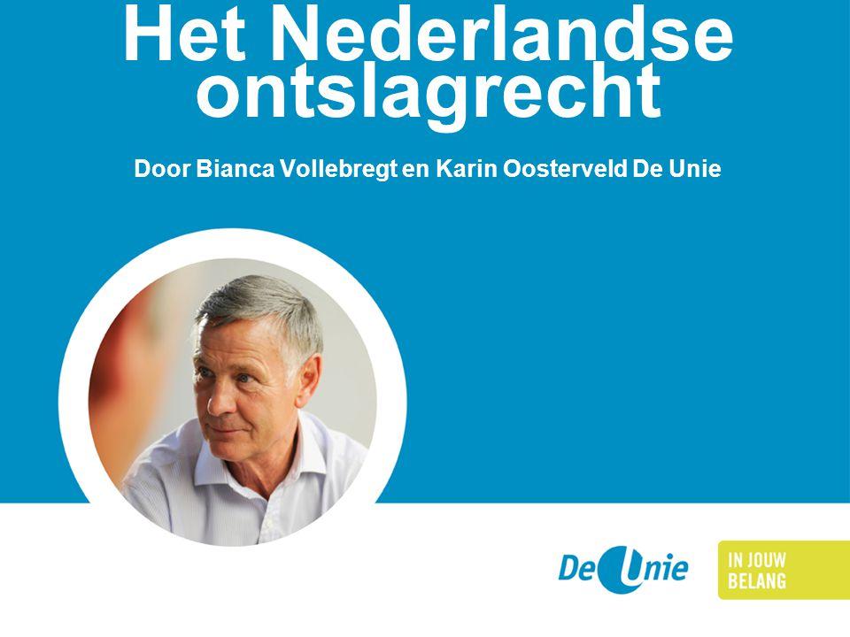 Het Nederlandse ontslagrecht