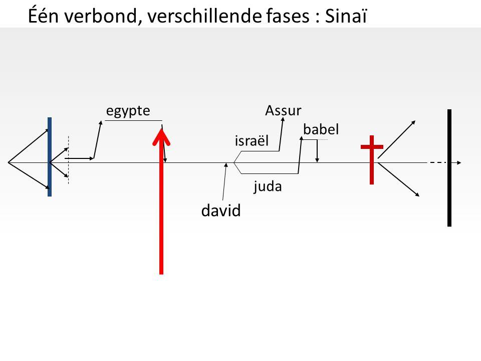 Één verbond, verschillende fases : Sinaï
