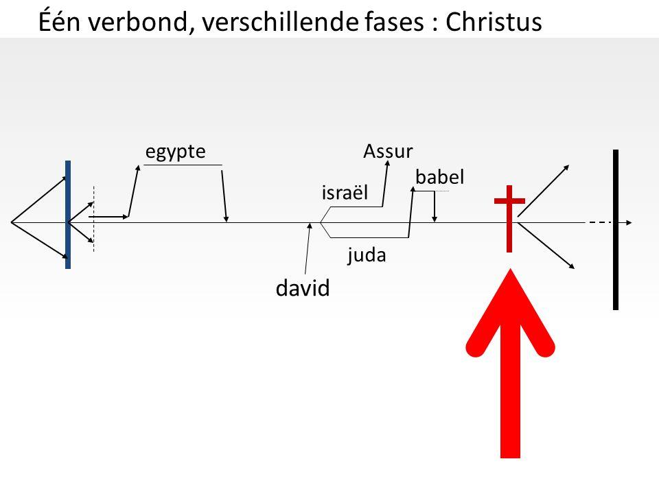 Één verbond, verschillende fases : Christus
