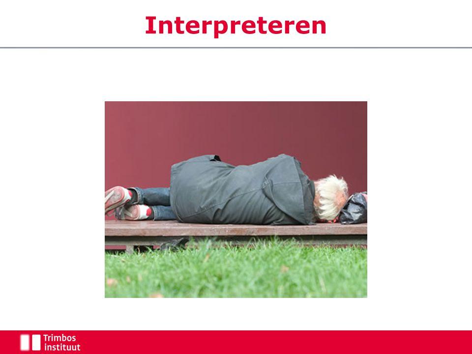 Interpreteren Wat zien deelnemers Een zwerver